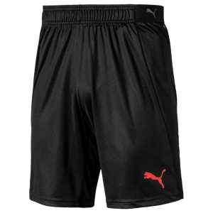 Puma, ftblNXT, shorts
