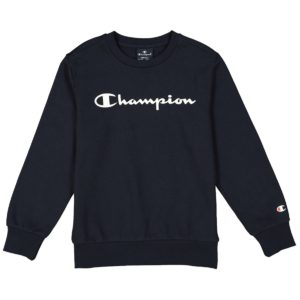Champion, Sweatshirt, Navy